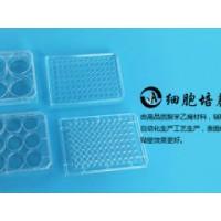 上海百千生物J00960平底无菌透明一次性96孔细胞培养板
