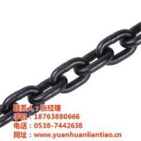 泰安鑫洲机械(图)|起重链条技术参数|珠海起