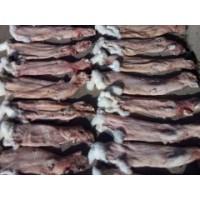 13694340346亚德兔业|吉林肉兔养殖报价l养殖技术